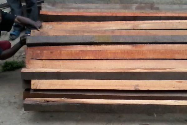 travail-bois-73DB4695E-D234-CB19-4DCD-AE74AD729FF7.jpg